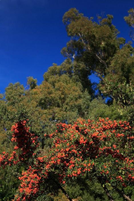 Tarifa Best Place To Stay| Casa Luna| Lush Gardens