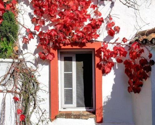 Cortijo La Hoya | Best Place To Stay in Tarifa, Spain | Casa Sol